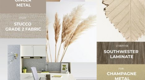 Choosing the Best Colour Scheme for Your Office